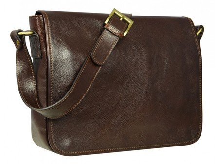 Dark Brown And Simple Leather Messenger Bag (3)