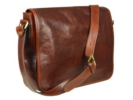 Brown And Simple Leather Messenger Bag (8)